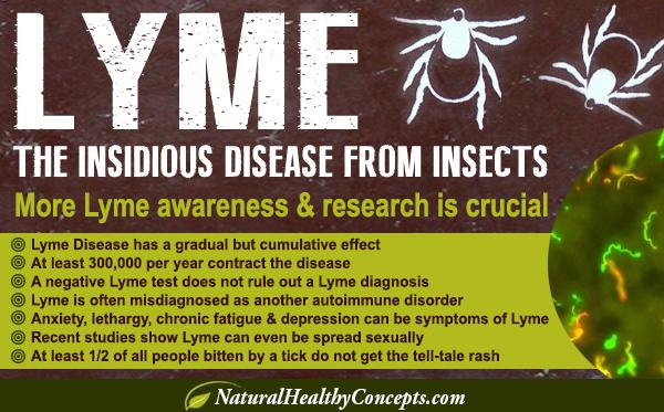 Lyme-disease-blog-2